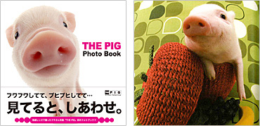 「THE PIG Photo Book」